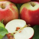 リンゴ酸イメージ画像